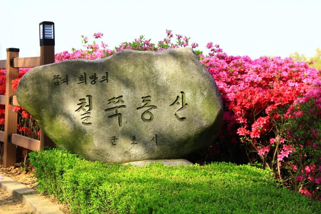 의왕왕송저수지, 군포철쭉동산,시골밥상 237