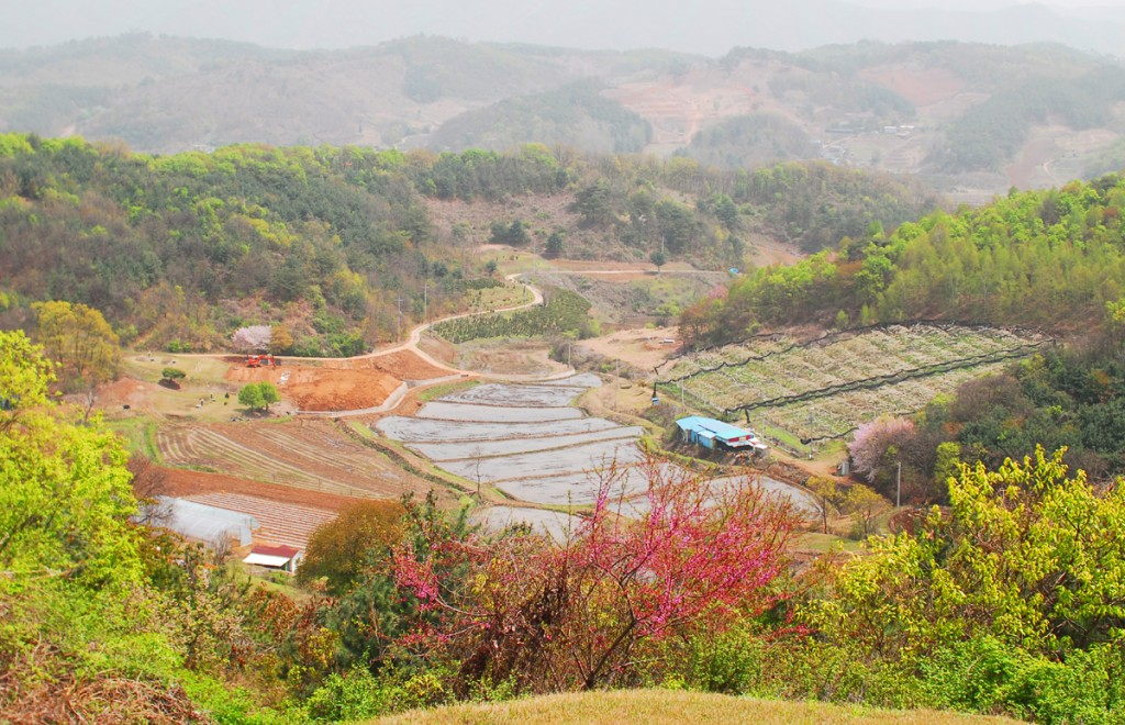 높은 곳에서 바라본 마을
