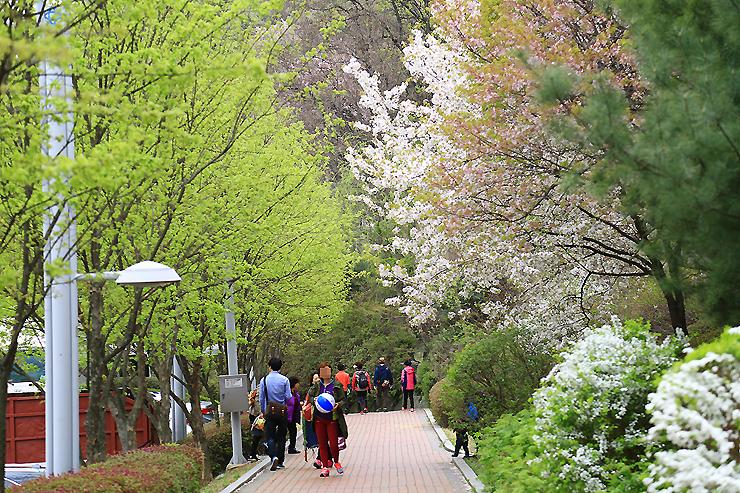 공원을 걷는 사람들