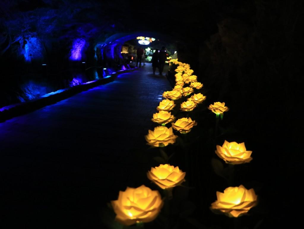 광명동굴,충현박물관, 테크노마트카메라 358