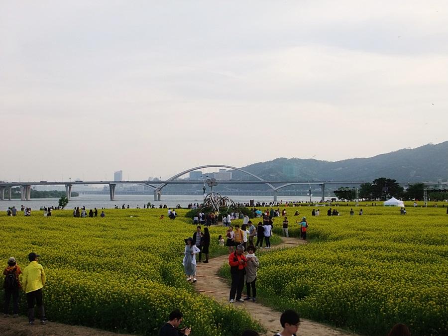사본 -일괄편집_내사진F7905