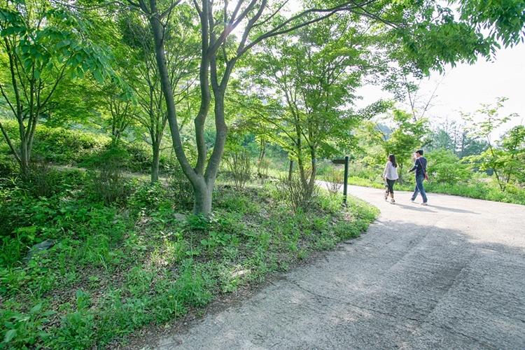 서후리숲019