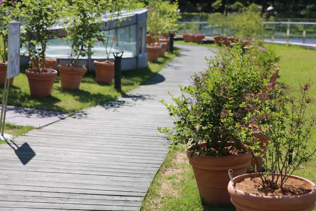 식물원 021