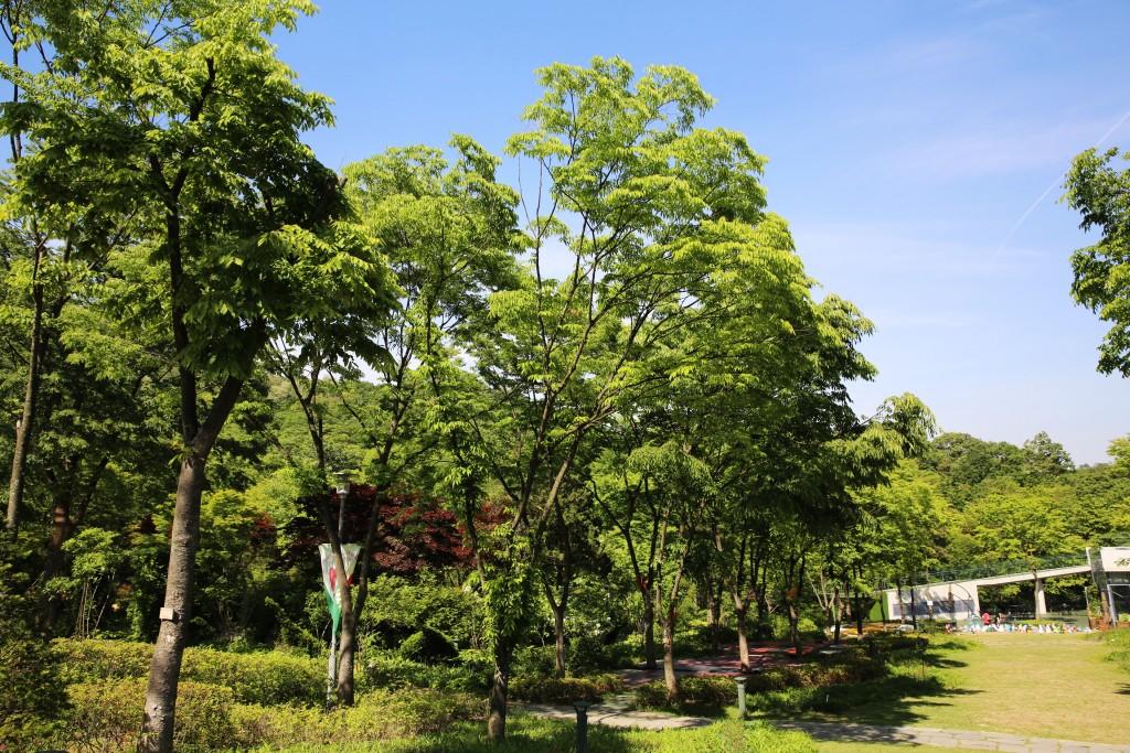 식물원 022
