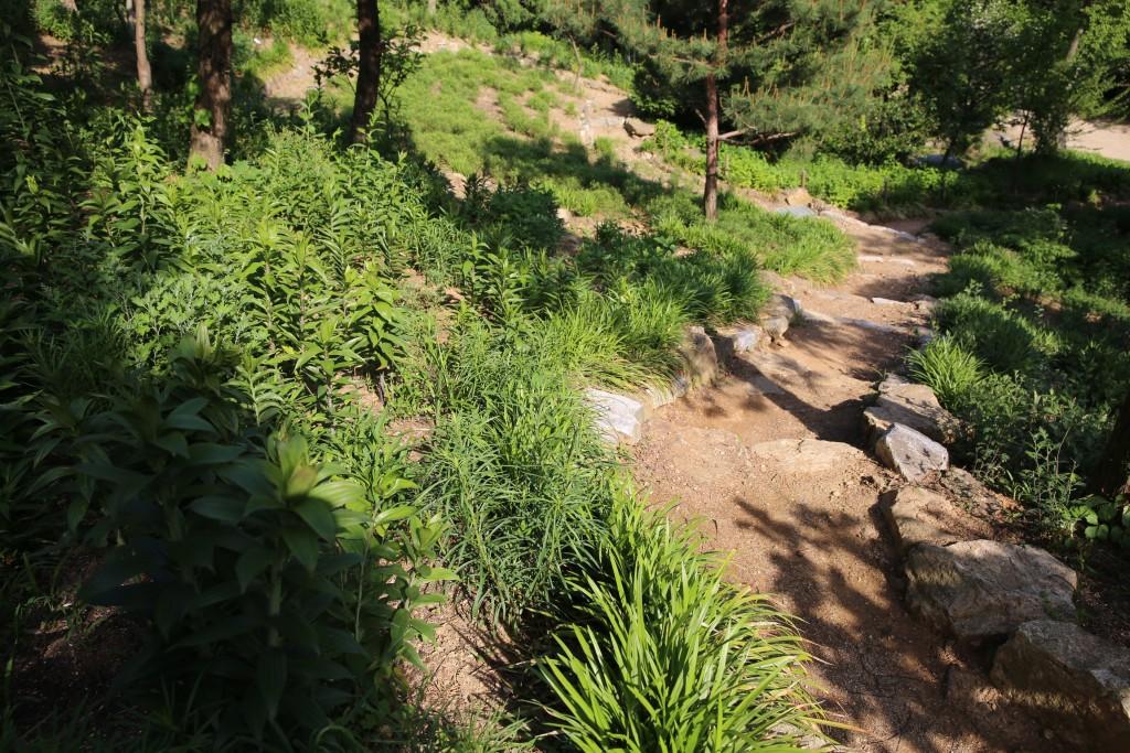 식물원 092