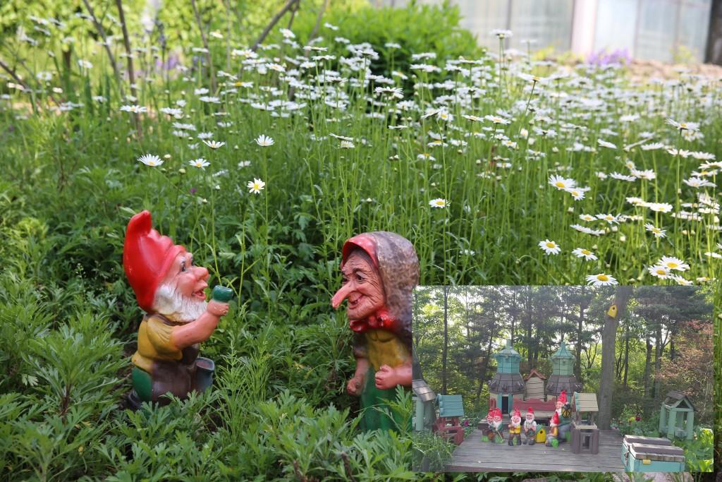 식물원 109