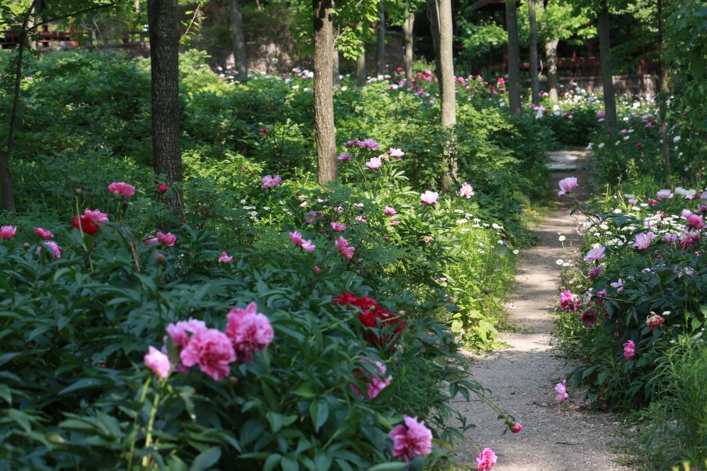 식물원 131