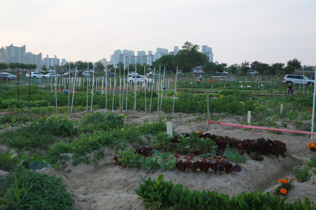 식물원 237