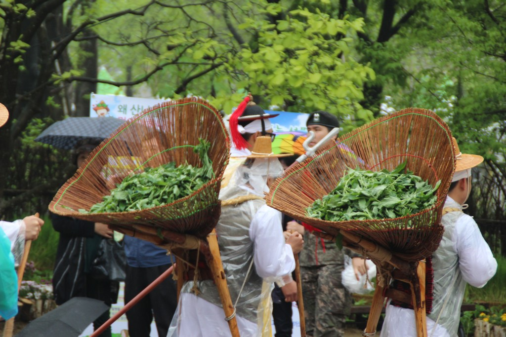 양평산나물축제,들꽃수목원,농업박물관,양평군립미술관 164