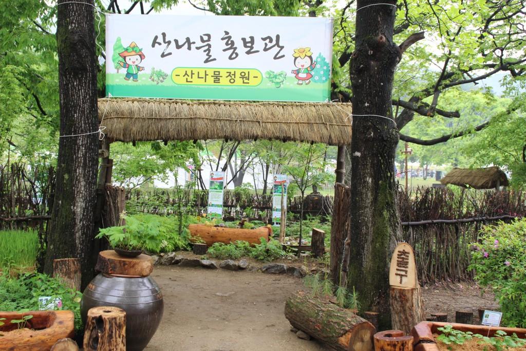 양평산나물축제,들꽃수목원,농업박물관,양평군립미술관 208