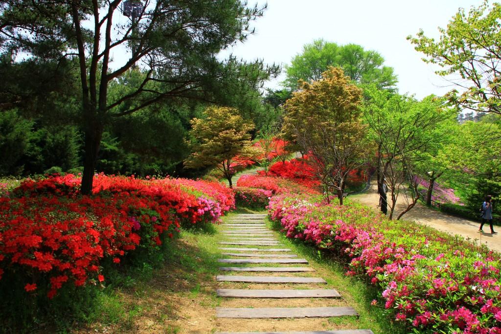 의왕왕송저수지, 군포철쭉동산,시골밥상 028