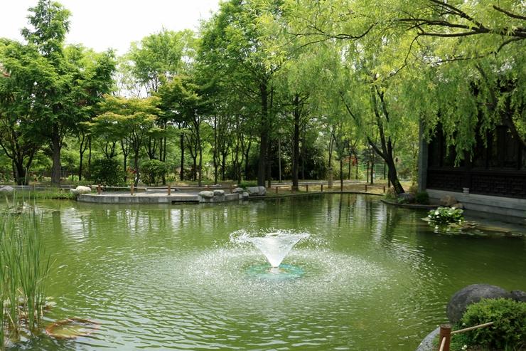 연못에서 나오는 분수