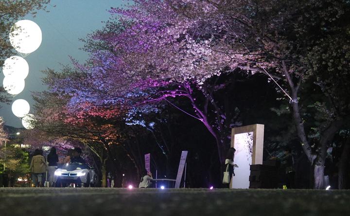 렛츠런파크 야간조명