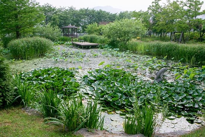 들꽃수목원010