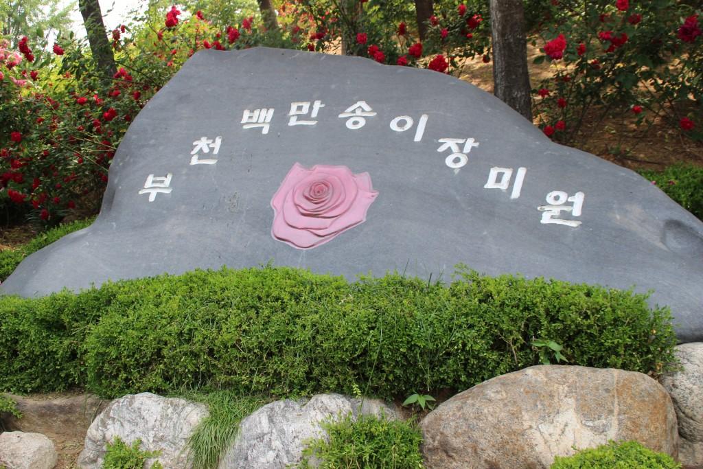 부천100송이장미공원,무릉도원수목원 029