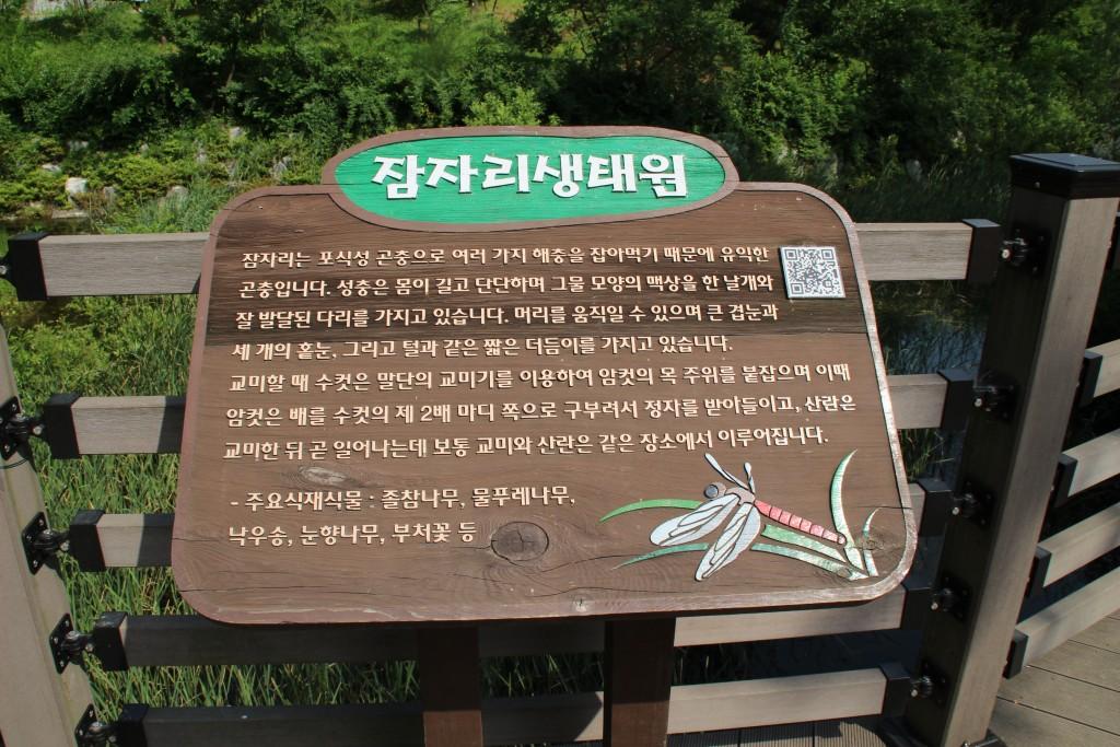 부천100송이장미공원,무릉도원수목원 238