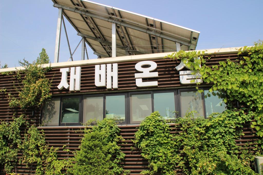 부천100송이장미공원,무릉도원수목원 244