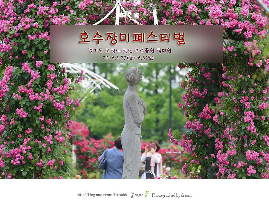 일산호수공원 장미페스티벌 포토존