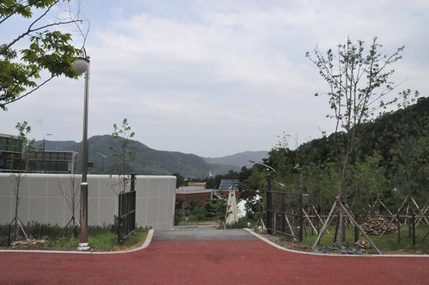DDCUN451
