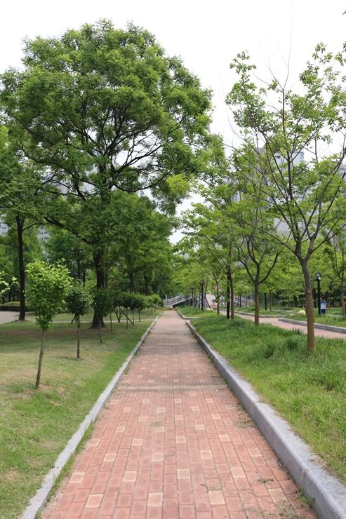 효원공원 산책길