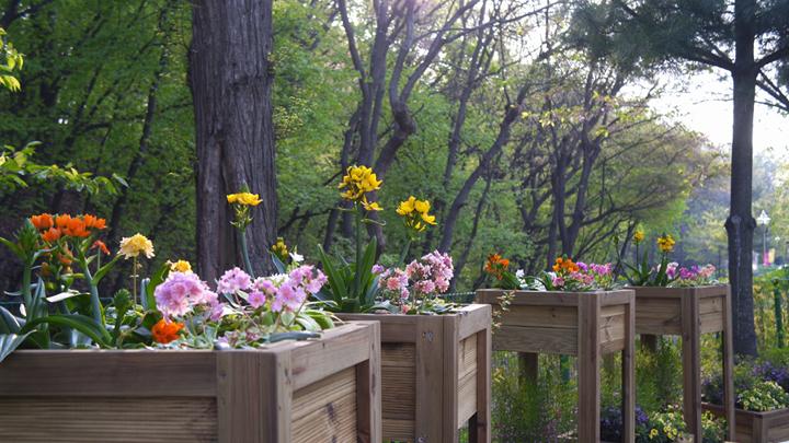 부천 자연생태공원