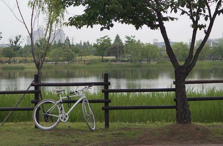 호수와 자전거