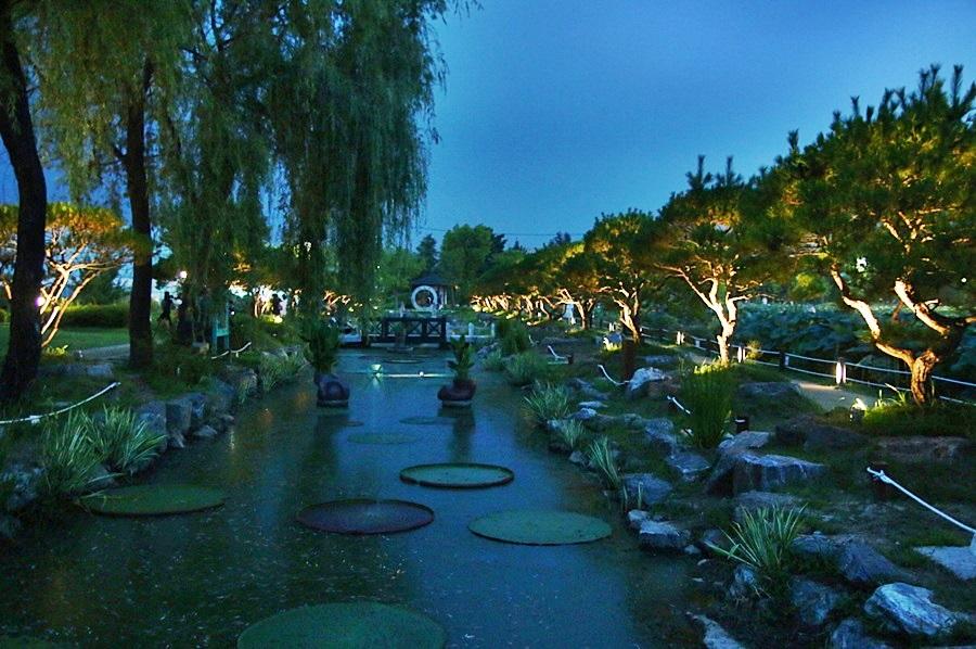 세미원 밤 풍경