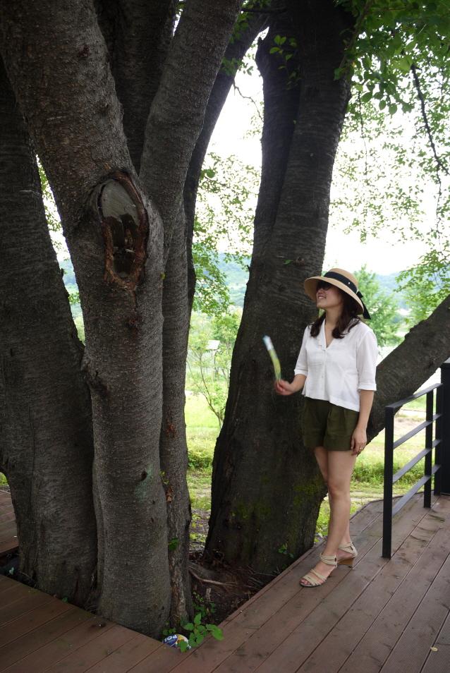 큰 나무 기둥과 딸