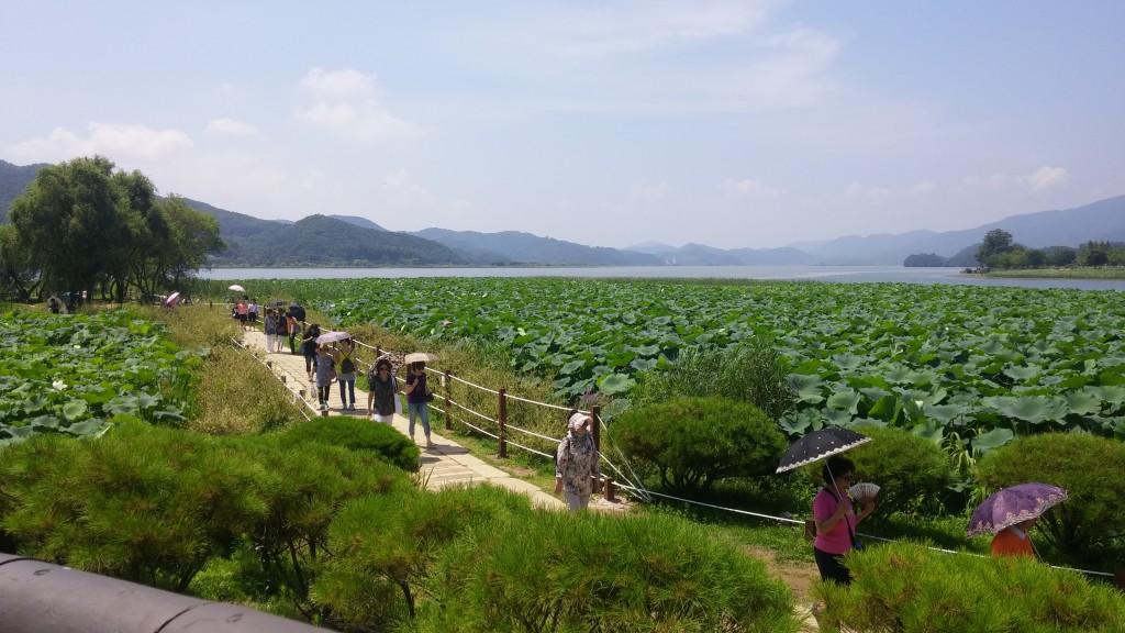 연못 옆 산책로를 걷는 관람객들