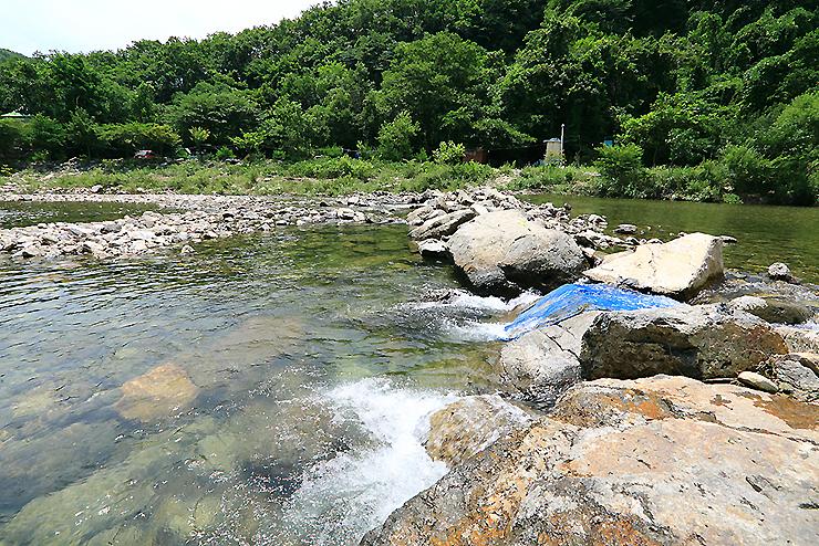 물이 흐르는 강