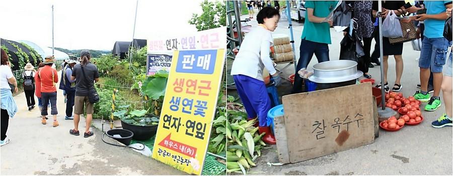농산물 판매하는 모습