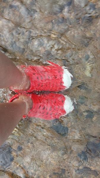 신발이 보일 정도로 맑은 물