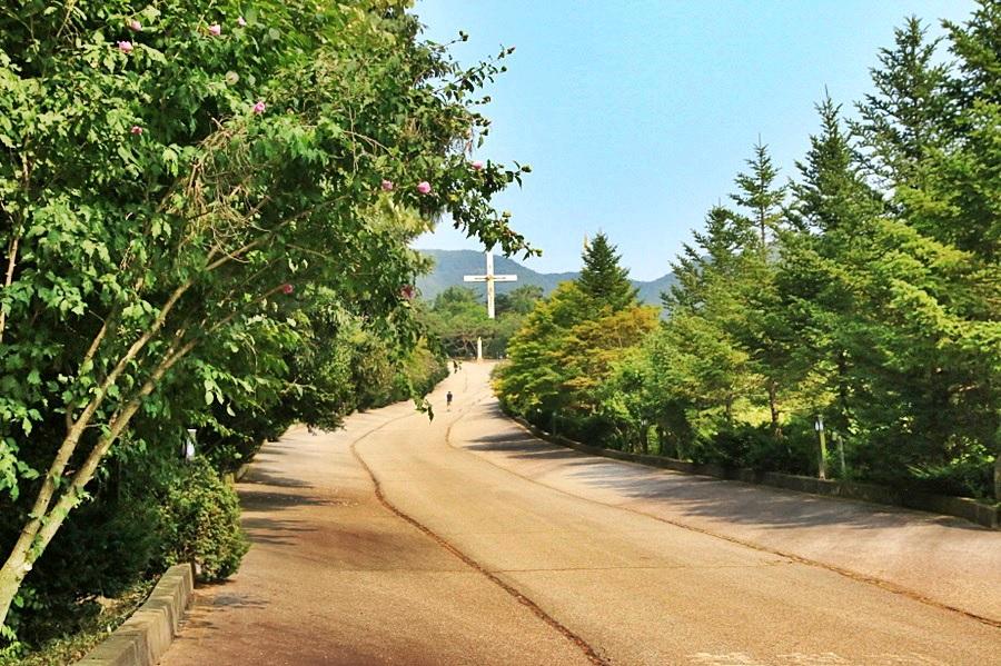 천진암 대성단 건립을 추친하던 성지로 가는 길