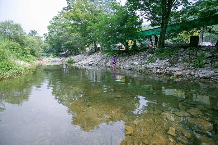 맑은 물이 보이는 계곡