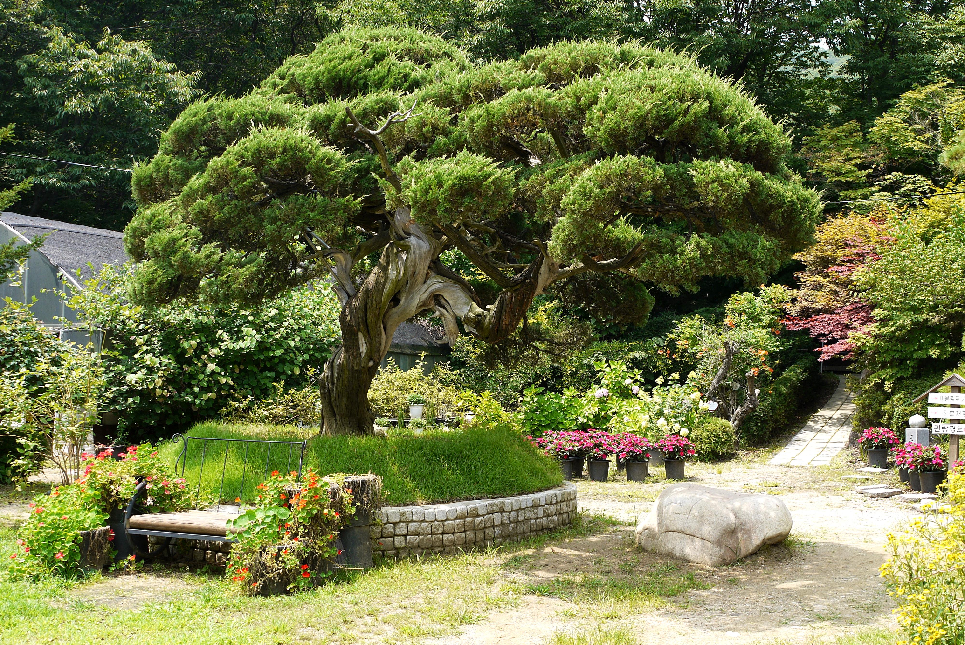 나무가 보이는 식물원 전경