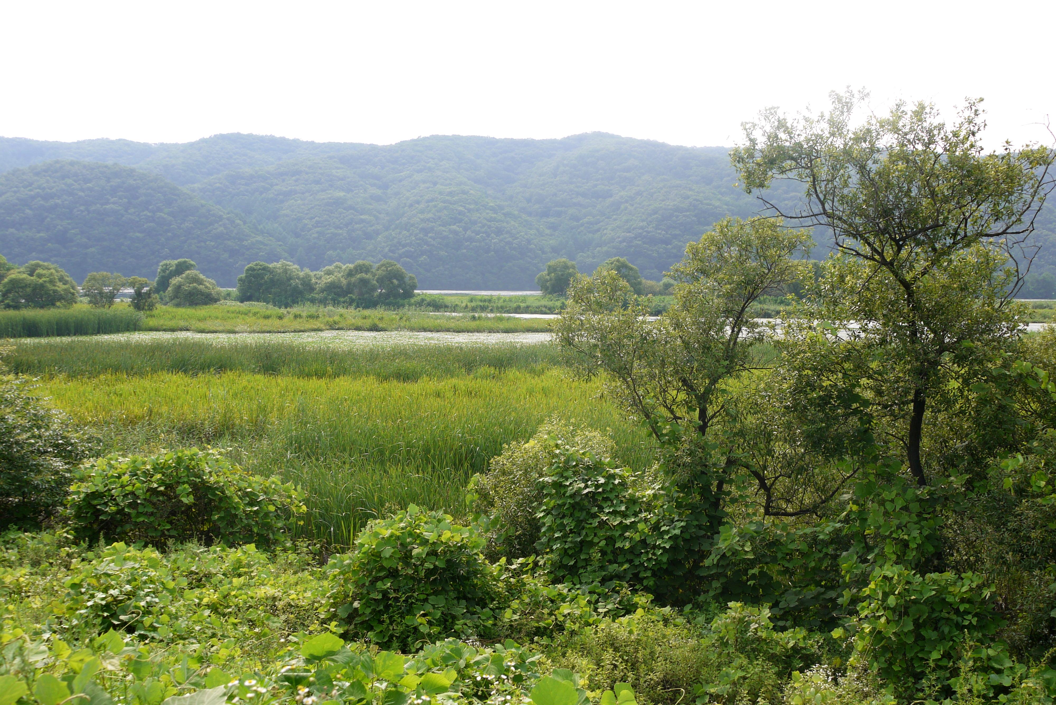 생태공원 전경
