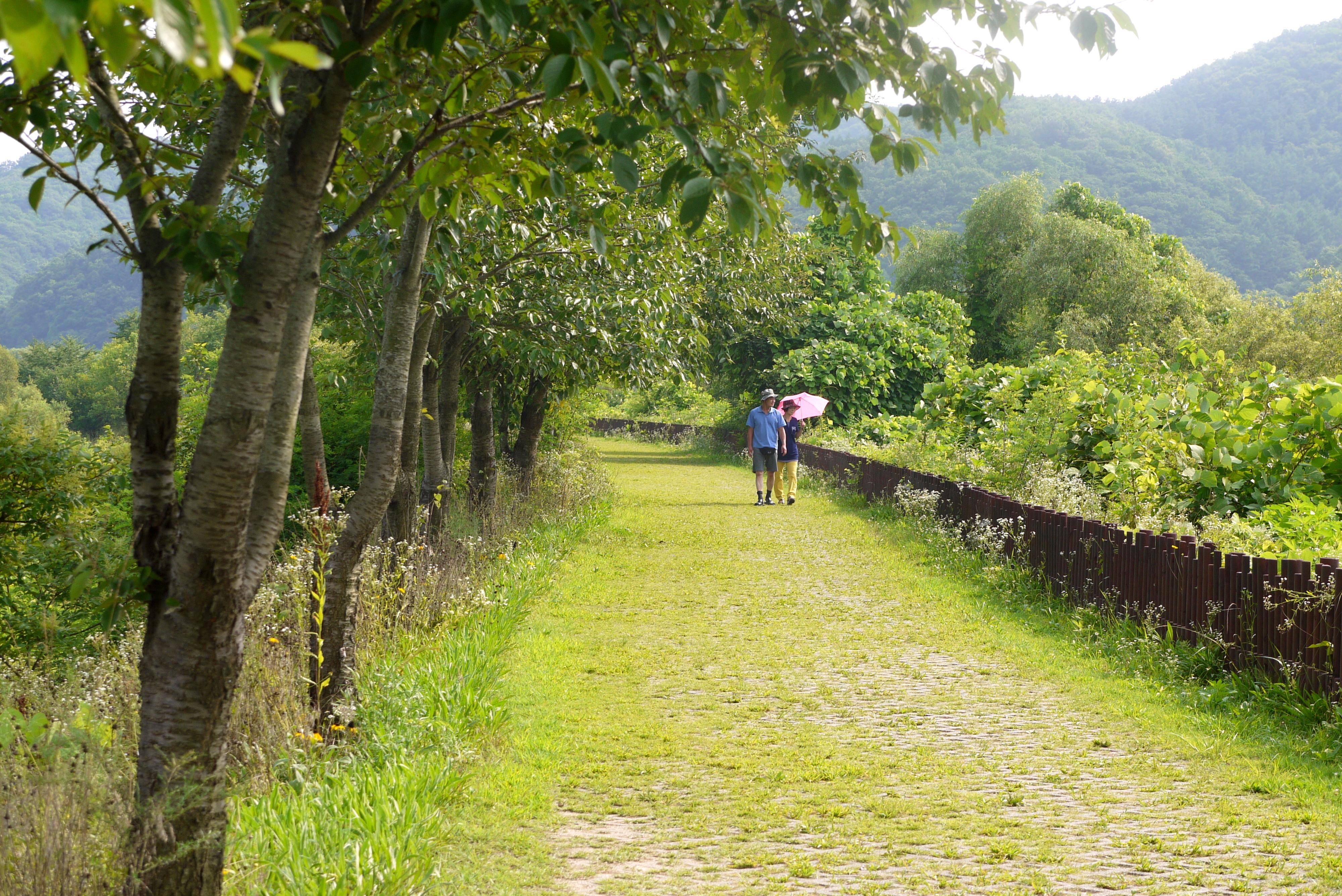 생태공원 산책로를 걷는 사람들