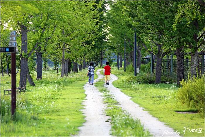야생화 단지 산책로를 걷고 있는 사람들