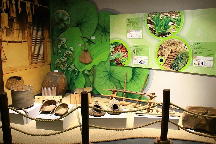 박물관 내부 사진