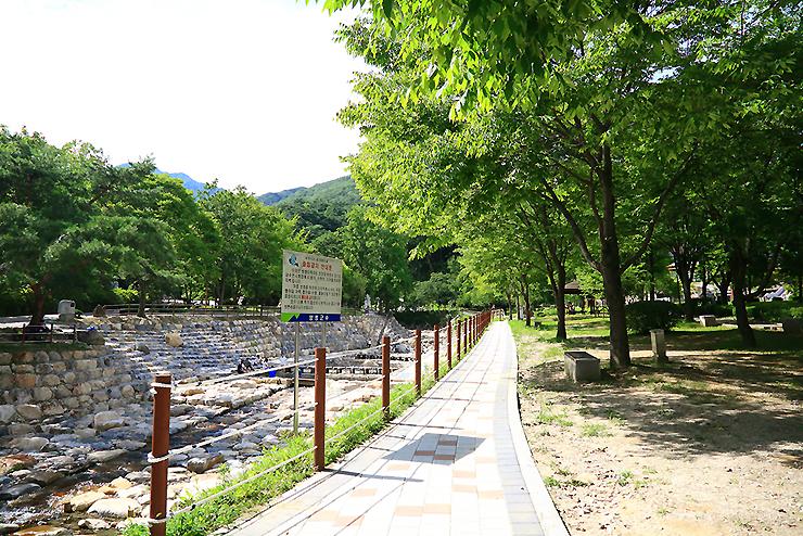 용문산 산책로길