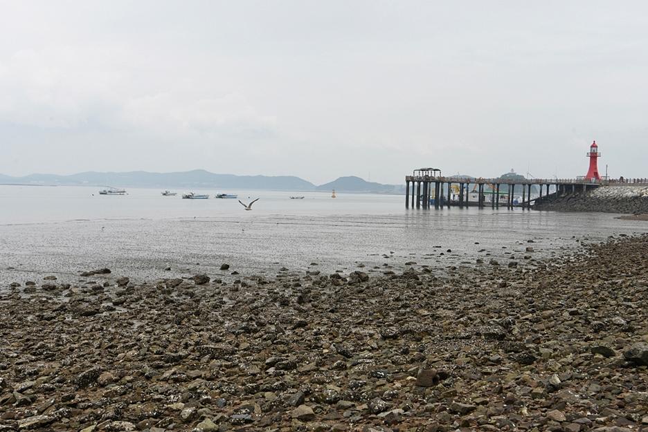 갯벌이 펼쳐진 해안가