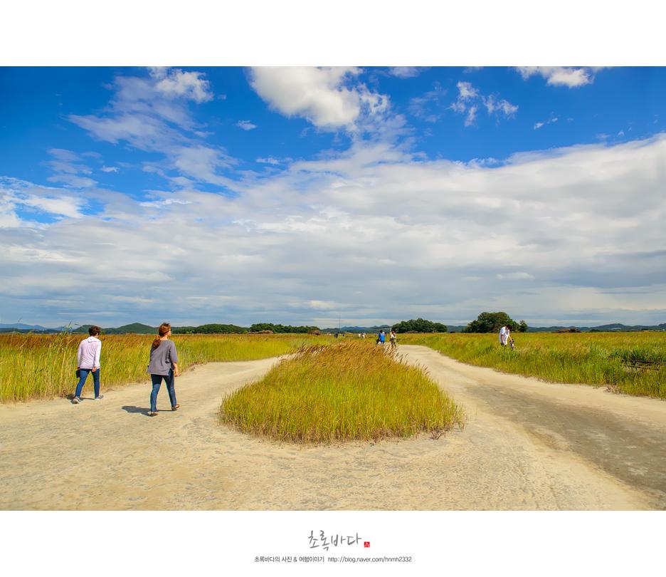 초원을 걷는 사람들