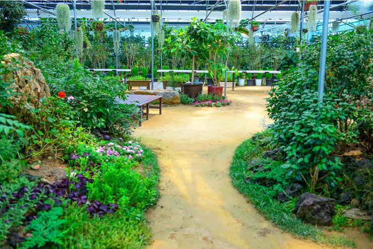 식물원 풍경