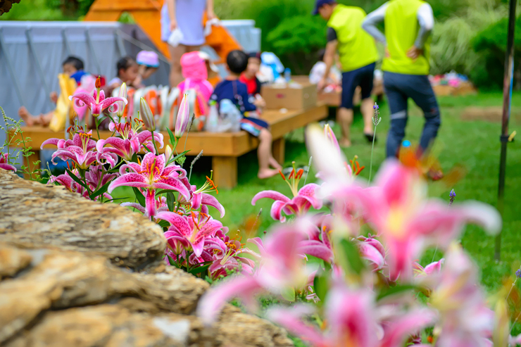 간이 수영장에서 노는 어린이들과 분홍백합