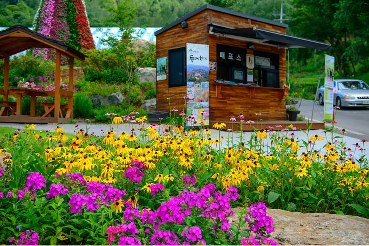 매표소 앞 꽃밭