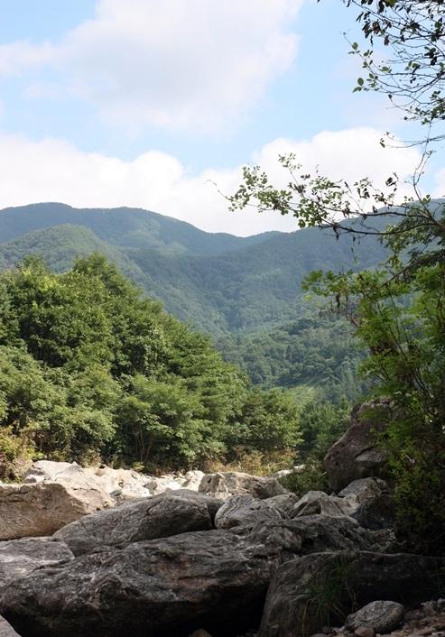 산의 풍경