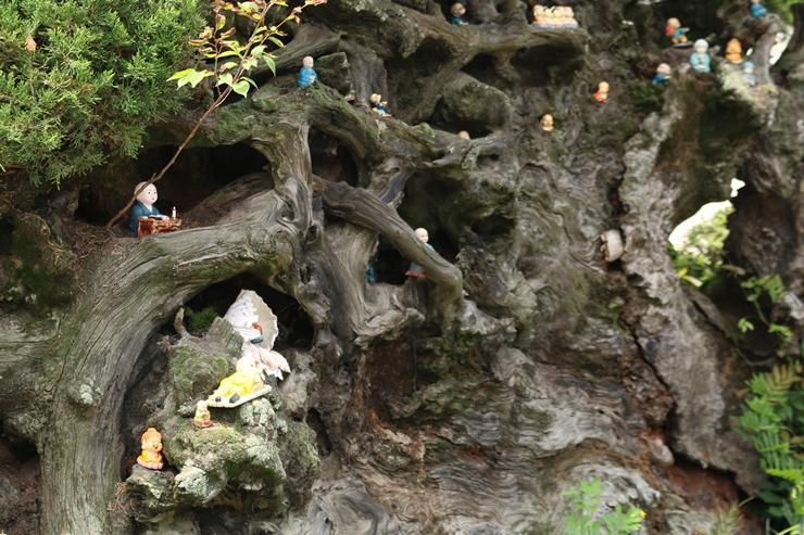 나무 가지 사이사이에 놓여져 있는 동자승 불상