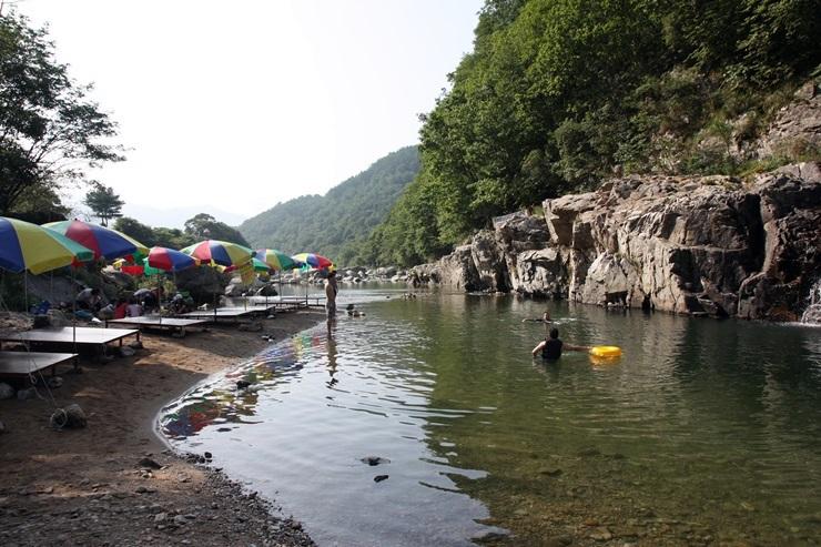 강가에 펼쳐진 파라솔들