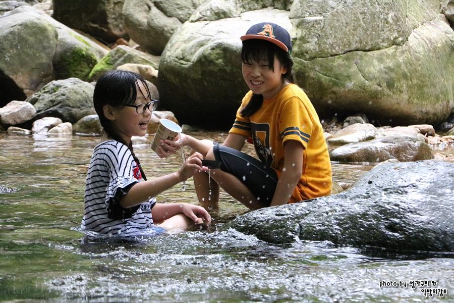 물속으로 입수한 아이들