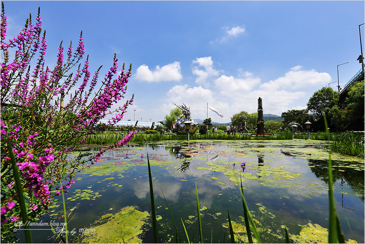 강가에서 보이는 연못과 하늘